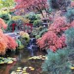 Autumn foliage in Butchart Gardens, Vancouver Island, Canada