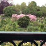 View into Monet's Garden